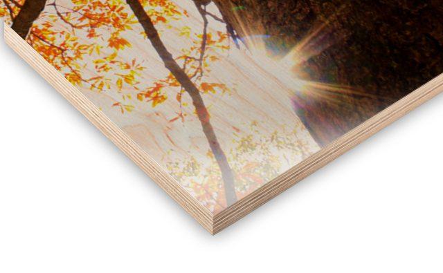 Holz-Druck mit Maserung