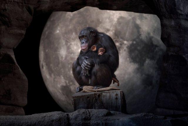 Pavel Kaplun erschafft Bilder, die eine Geschichte erzählen