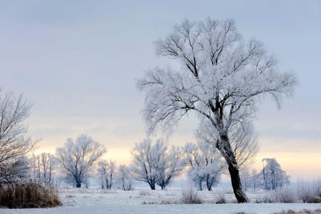 Ein Weißabgleich korrigiert Winter-Bilder