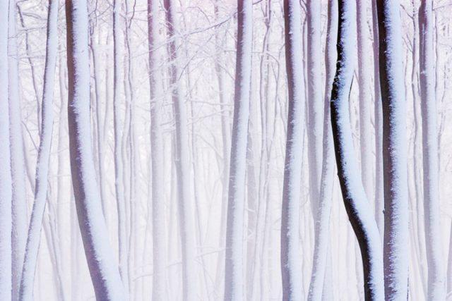 Winter-Bilder müssen richtig belichtet werden