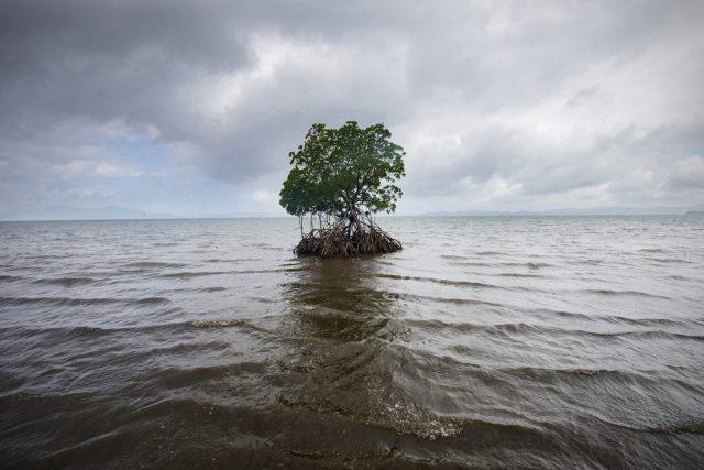 In Noor by Noor reist man durch das Weltgeschehen in Haiti und Sierra Leone, hin zum pazifischen Ozean – die aufrüttelnden Aufnahmen erzählen ganze Geschichten.